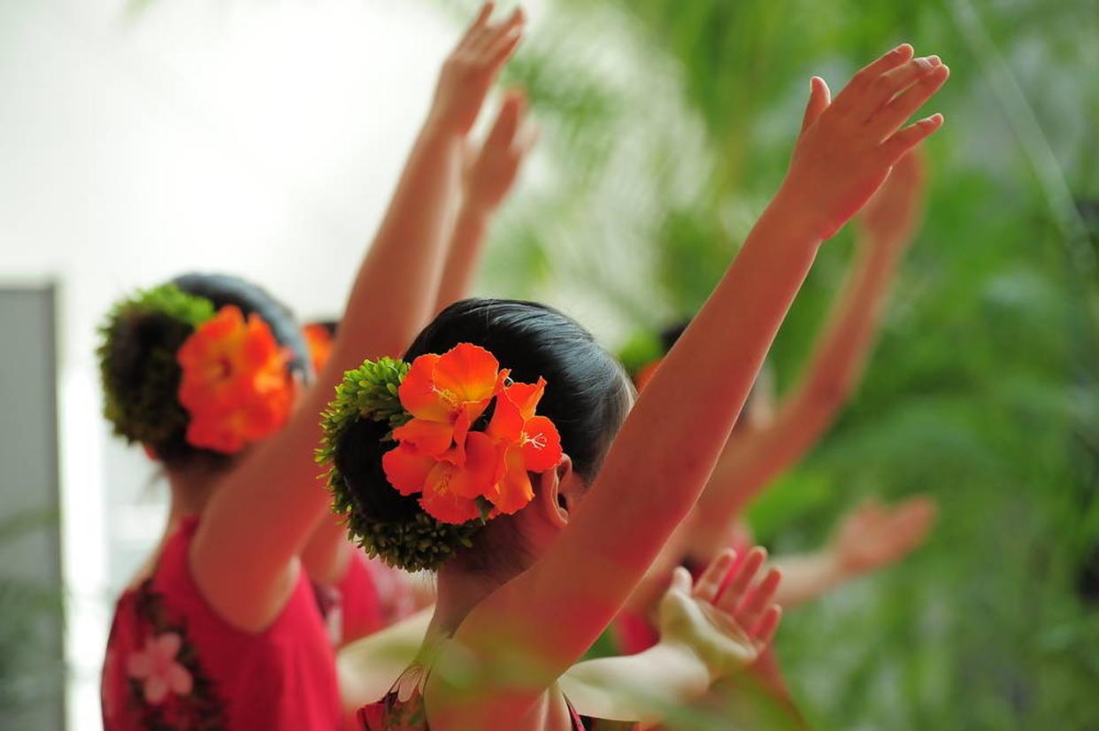 フラダンス イメージ
