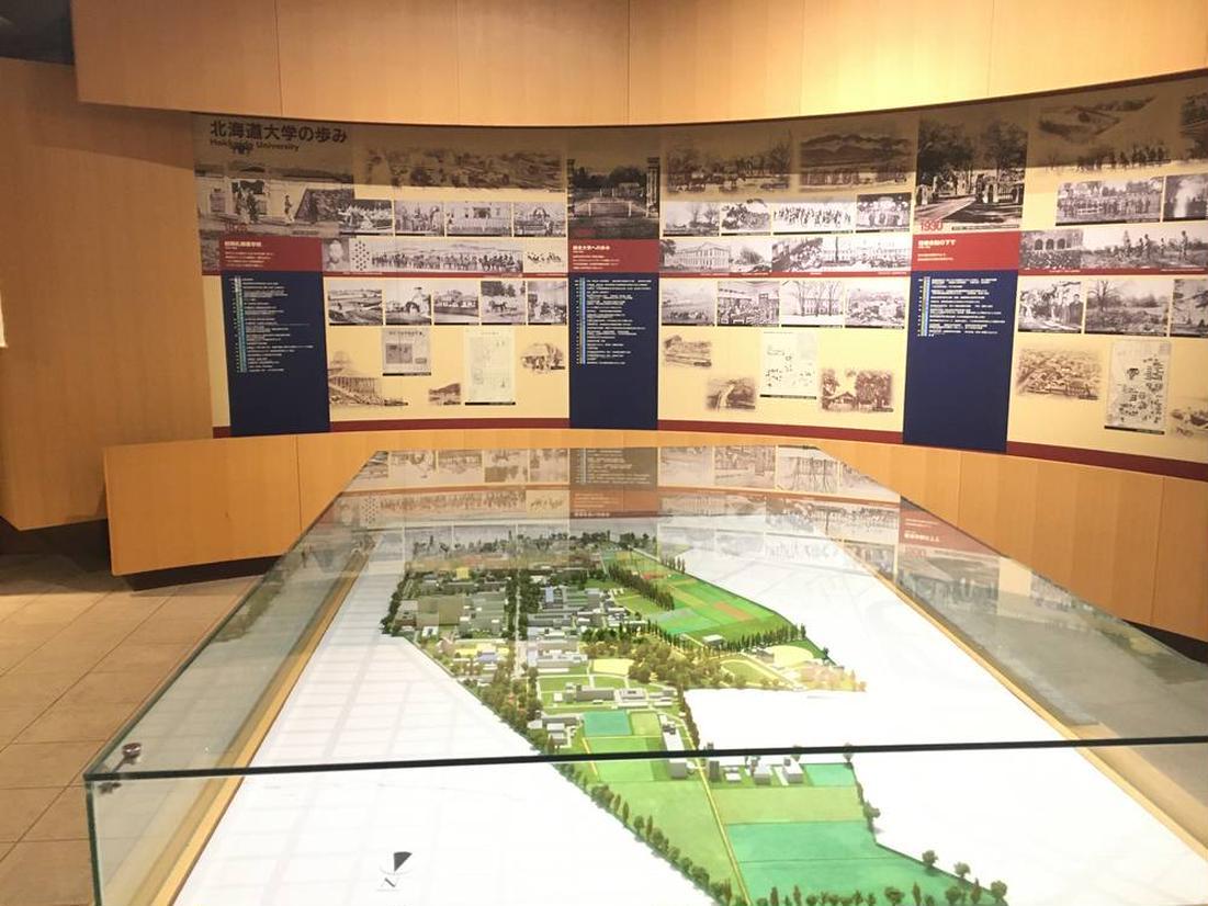 北海道大学の歴史