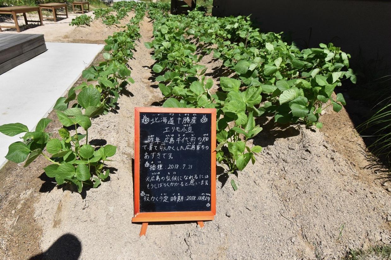 畑LABO(小豆畑)