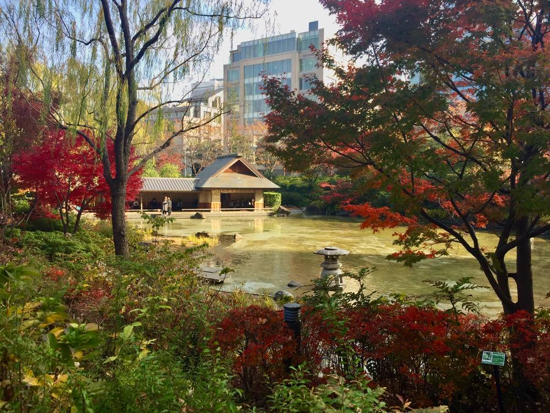 港区立檜町公園 中島と池