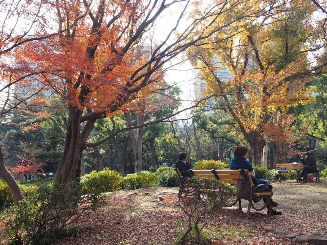 日比谷公園 ベンチ