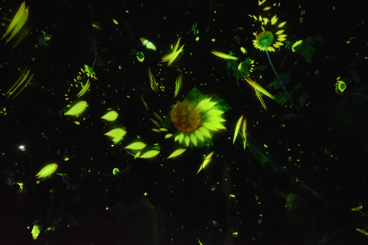 Floating in the Falling Universe of Flowers チームラボ プラネッツ TOKYO DMM.com