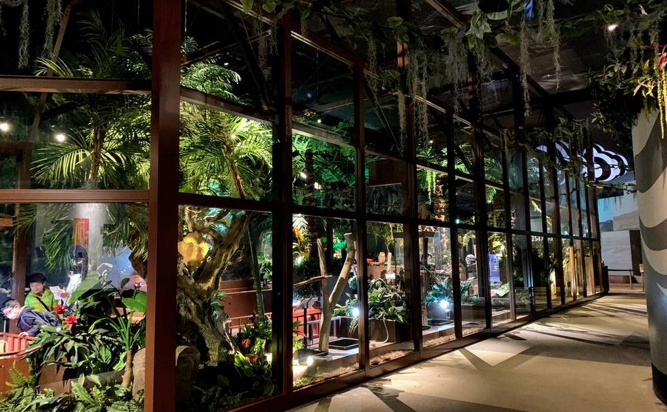 【オービィ横浜の楽しみ方完全ガイド】映像×大自然の体験型パークの見どころを紹介!のカバー画像