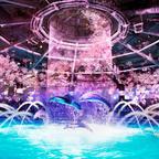 海の生きものたちと桜舞う花見の宴へ!マクセルアクアパーク品川にて「NAKED SAKURA AQUARIUM」開催