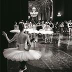 パリ・オペラ座バレエ団のダンサーたちと生み出した「In Situ ピエール=エリィ ド ピブラック展」