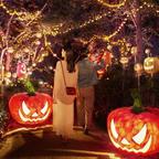 フォトジェニックなスポットやグルメに仮装でお得な特典も!ハウステンボスでハロウィーンイベントが開催