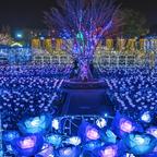フォトジェニックな空間!日本三大イルミネーションに認定された500万球を超える光の世界を満喫