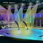 クラゲ大水槽にサメのミュージアム!「アクアワールド茨城県大洗水族館」12月にリニューアルオープン