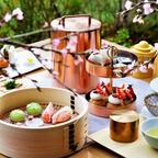 桜がテーマのレストランメニューとスパトリートメント「HOTEL THE MITSUI KYOTO」で提供!