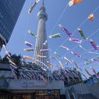 都内最大級のこいのぼりの群泳やパンフェス!東京スカイツリータウン(R)で初夏イベント開催