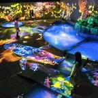 デジタルテクノロジー×大自然!今年も御船山楽園でアート展『チームラボ かみさまがすまう森』が開催