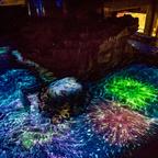 夏の夜限定イベント「すみだ水族館」で開催!大人対象のクラゲのワークショップやペンギンと花火のコラボ