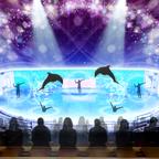 イルカパフォーマンス×ダンス・アクロバット×映像芸術!迫力満点の新たなナイトエンターテインメント開催