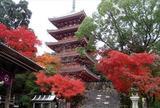 足を延ばして、竹林寺