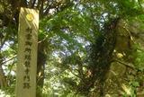 瑞龍寺(村雲御所)