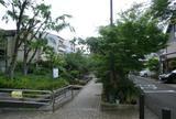 楠根川跡緑陰歩道