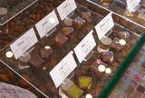 プレスキルショコラトリー