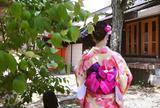 着物レンタル 富士 清水寺店 | 京都 浴衣レンタル | 人気 安い 当日 予約なし