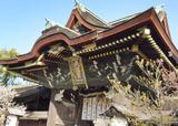 京都【北野天満宮+α】で楽しいお参りを…!
