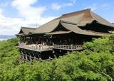 京都ひとり旅〜本屋に寄ってカフェでまどろんで〜