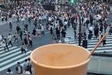 スターバックスコーヒー SHIBUYA TSUTAYA店