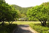 梅林公園は梅の名所