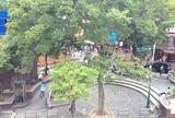 御津公園(三角公園)