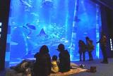 のとじま臨海公園水族館