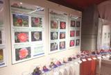 都立大島公園椿資料館