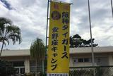 宜野座村球場
