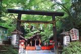 野宮神社    (じゅうたん苔)                 良縁 子宝 学問の神様  (ののみや)