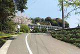 3:水俣市立水俣第一中学校