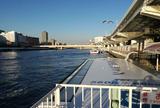 東京水辺ライン両国発着場