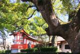 佐賀県護国神社