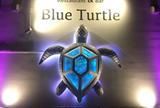 ブルータートル[Blue Turtle]