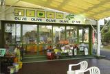 牛窓オリーブ園とオリーブショップ