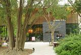 スターバックスコーヒー 浜松城公園店