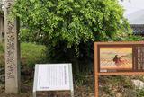 恵比寿神社・十二柱神社