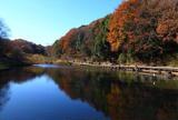 四季の森公園/ズーラシア