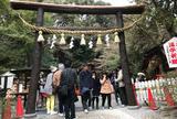 「源氏物語」の賢木(さかき)  野宮神社