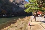 「源氏物語」の明石の君の大堰山荘   亀山公園