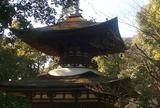 「源氏物語」 蜻蛉  石山寺
