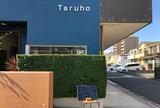 タルホ(Taruho)