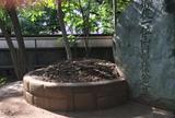 山内豊信(容堂)墓