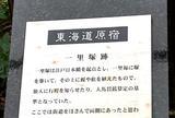 東海道原宿 一本松一里塚跡