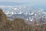 一夜城からから小田原宿を見下ろす。
