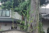 白須賀宿の火防