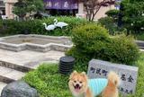 加賀 山中温泉 菊の湯(共同浴場)