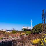 【横浜 観光スポット紹介】みなとみらいや中華街などグルメから博物館まで王道30選!