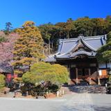 修善寺温泉旅行ガイド!人気エリアや見どころ・アクセス情報が満載!